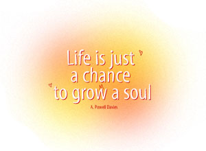 Life is a chance to grow a soul